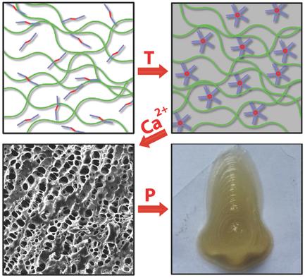 3d_bioprinting_bio_ink